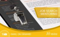 Job Search Mentoring 30 mins